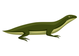 Cartoon lizard character. Small green lizard. Animal logo design, flat icon. Vector illustration isolated on white background