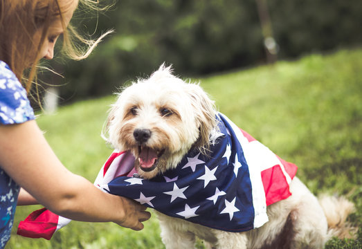 Dog with american flag bandana