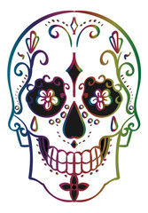 Human Skull stylized for the Day of the Dead