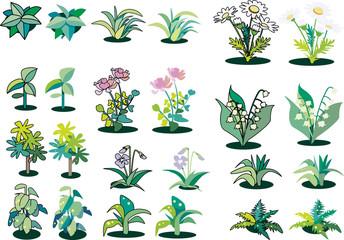 草や花のカット集