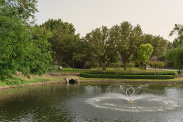 Typical community lake with fountain spray in Coppell, Texas, America. Well-groomed tree landscaping and outfall sewer