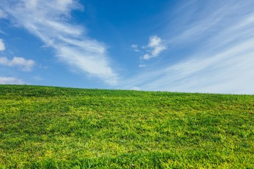 green grass and blue sky nature background
