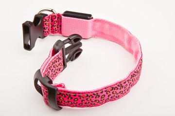 collar dog rhinestones studio