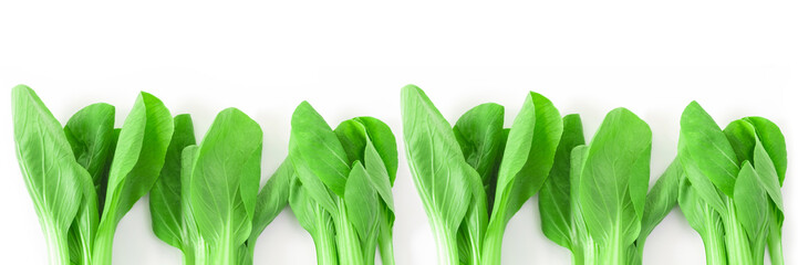 Baby bok choy on white background. Healthy food for good healt concept. Vegetables concept.