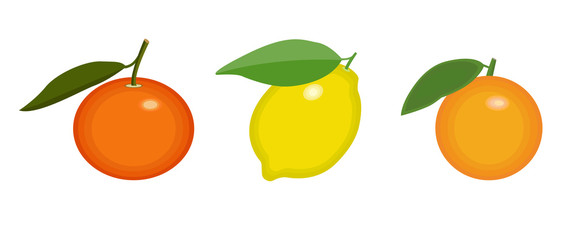 SET of citrus fruits. Tangerin, orange and lemon icon on isolated background concept for farmers market organic food in flat style vector illustration