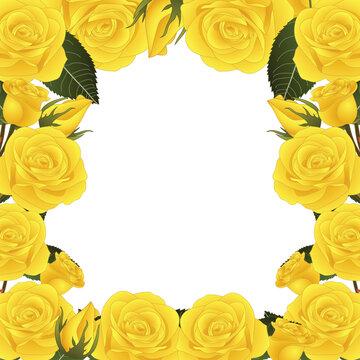 Yellow Rose Flower Border