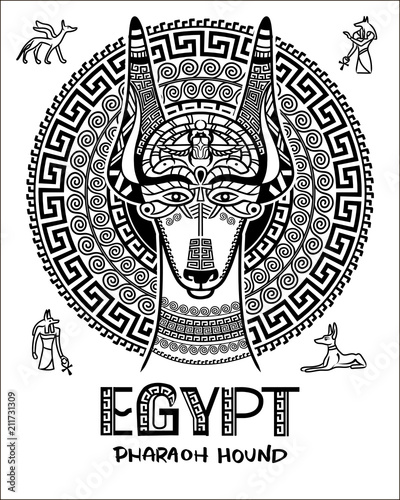 Vector image of an Egyptian dog  Ornament of ancient Egypt