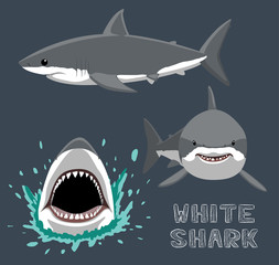 White Shark Cartoon Vector Illustration