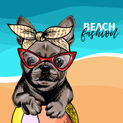 Vector portrait of French bulldog dog weas sunglasses and retro bandana. Summer fashion illustration. Sea, beach, ocean. Hand drawn pet portait. Poster, t-shirt print, holiday, postcard, summertime