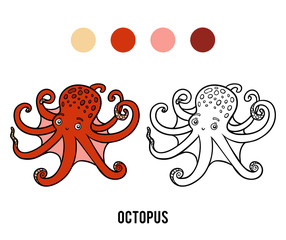 Coloring book, Octopus