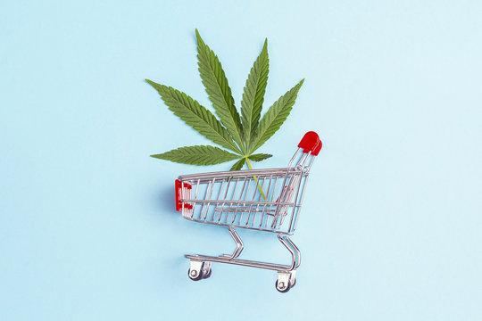 Shopping trolley with fresh cannabis leaf on blue background.