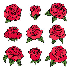 Illustrations of plants. Red roses symbols of love. Wedding flowers isolate on white