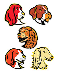 Hound Dogs Mascot Collection