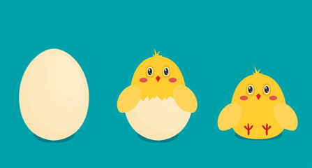 Vector button chicken and egg in flat style.