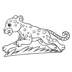 Leopard cartoon illustration isolated on white background for children color book
