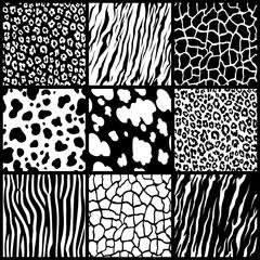 set texture animal skin seamless pattern background african tiger zebra giraffe cheetah cow jaguar