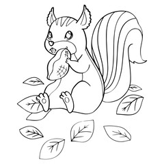 Squirrel cartoon illustration isolated on white background for children color book