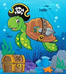 Pirate turtle theme image 2