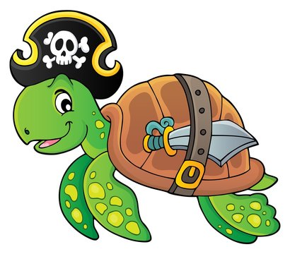 Pirate turtle theme image 1