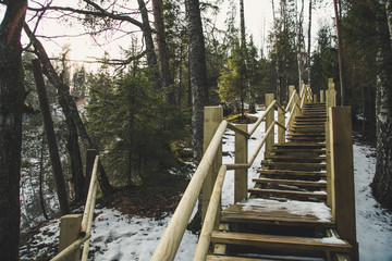 Wood stairs  in Gauja nation park. Trail in wood in cloudy day of winter.