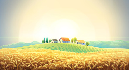 Rural landscape with a wheat field and a village on a hill. Fototapete