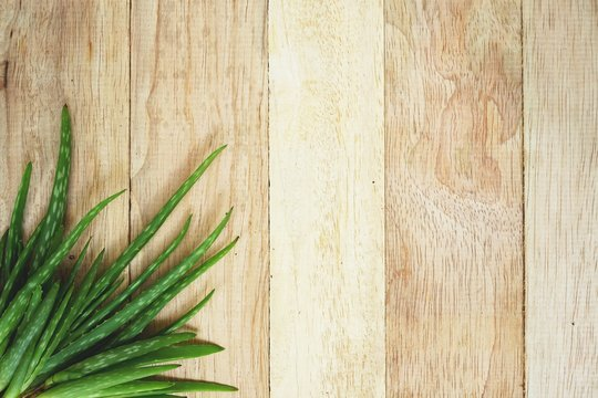 Aloe vera on wooden table background, copy space, skin care concept