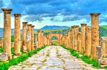 Printed roller blinds Algeria Berbero-Roman ruins at Djemila in Algeria