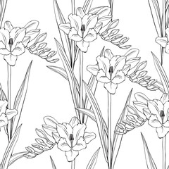 Seamless pattern with hand drawn freesia flowers. Vector illustration. Black and gray floral silhouettes on white background.