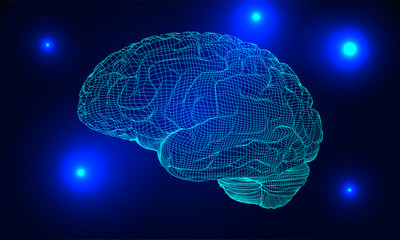 Wireframe brain vector