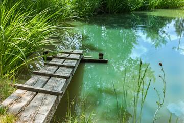 Charmanter Gartenteich. Kleiner natürlicher Gartensee mit Holzsteg.