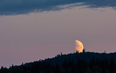 Half moon setting on dark forested ridge