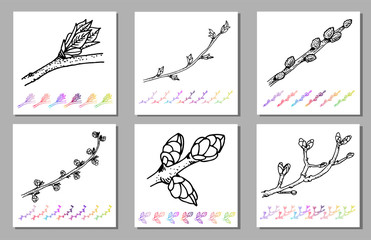 Fototapeta Vector Set of Kidney bud black pattern in the plant design. Hand painted spring garden flora. Black sletch isolated on whie background with gradient colorful elements Trunks and twigs for your design.