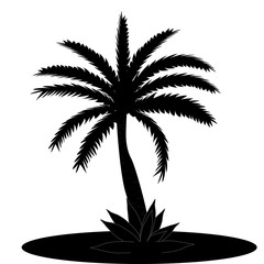 Beautiful Black and White Palm Tree Leaf Silhouette Background Vector Illustration