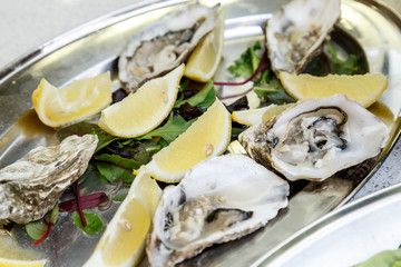 Oysters shells served with lemon on a metal tray