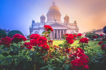 Saint Petersburg. Fog. Isaakievskaya square in the fog. St. Isaac's Cathedral in the fog. Russia. St. Petersburg early in the morning. St. Isaac's Cathedral in flowers. Poster of Petersburg.