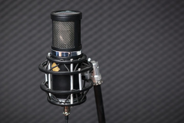 Professional condenser studio microphone.