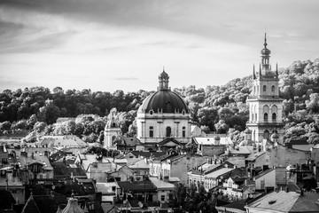 Lviv panoramic view