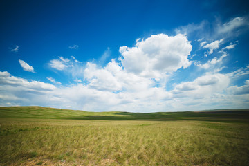Clouds grass steppe sun