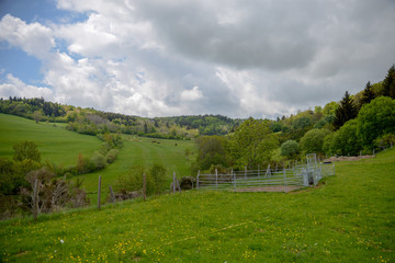 Paysage d'Auvergne avec ses pâturages et sa forêt