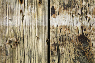 The texture of the wood is very clear. Dark spots contrast very clearly with the light background.