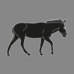 vector isolated silhouette of a donkey, on a gray background