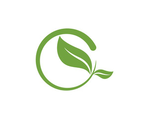 Leaf ecology nature Logo Template