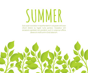 Summer Banner Template with Fresh Thick Weed Grass