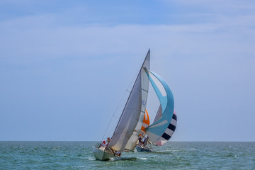 Sailing Yachts in the Open Sea