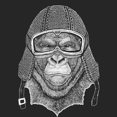 Gorilla, monkey, ape. Vintage motorcycle hemlet. Retro style illustration with animal biker for children, kids clothing, t-shirts. Fashion print with cool character. Speed and freedom.