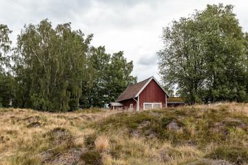 Antikes Grabfeld der Wikinger in Südschweden