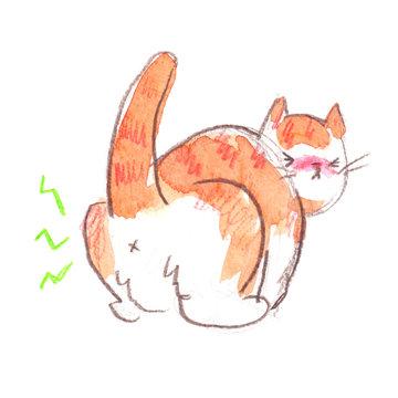 Bruised, not Broken | Cat art, Cats illustration, Cat injuries