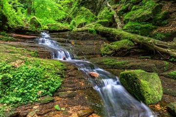 fließender Bach im Wald