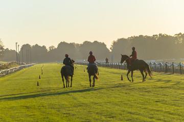 Race Horse Rider Training Track Landscape Morning