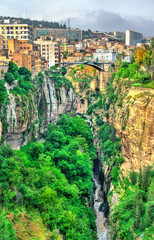 Wall Murals Algeria The Rhummel River Canyon in Constantine. Algeria